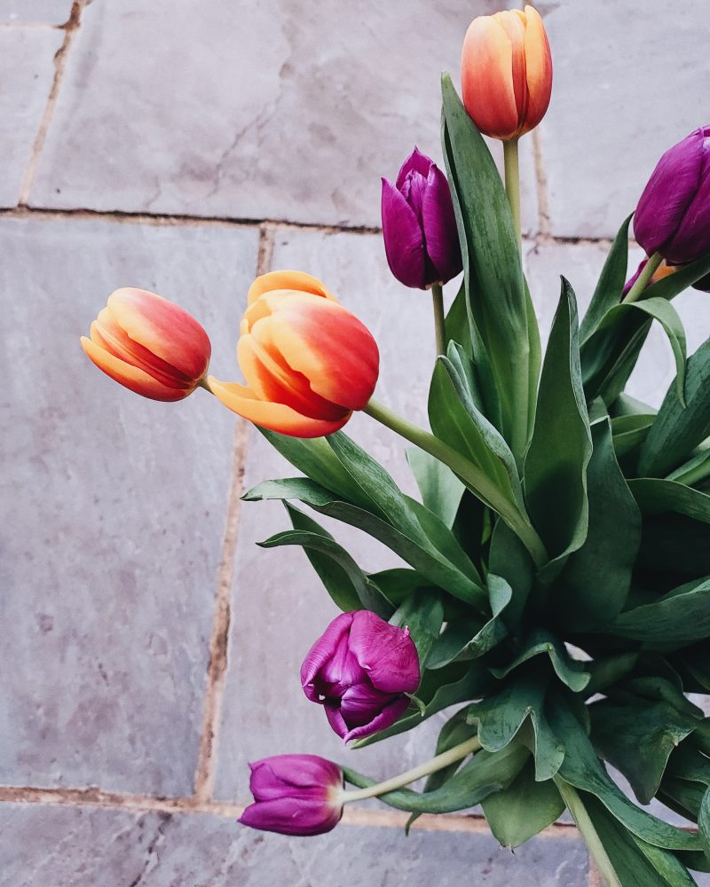 Image of tulip bouquet for blog on getting back the spark in your relationship