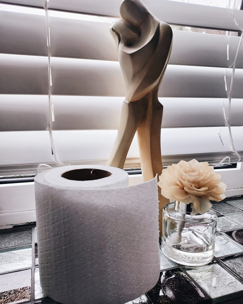 Image of toilet roll in bathroom for blog on pooping at a partner's place - The Style of Laura Jane